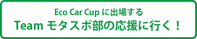 ecocarcup2015entry